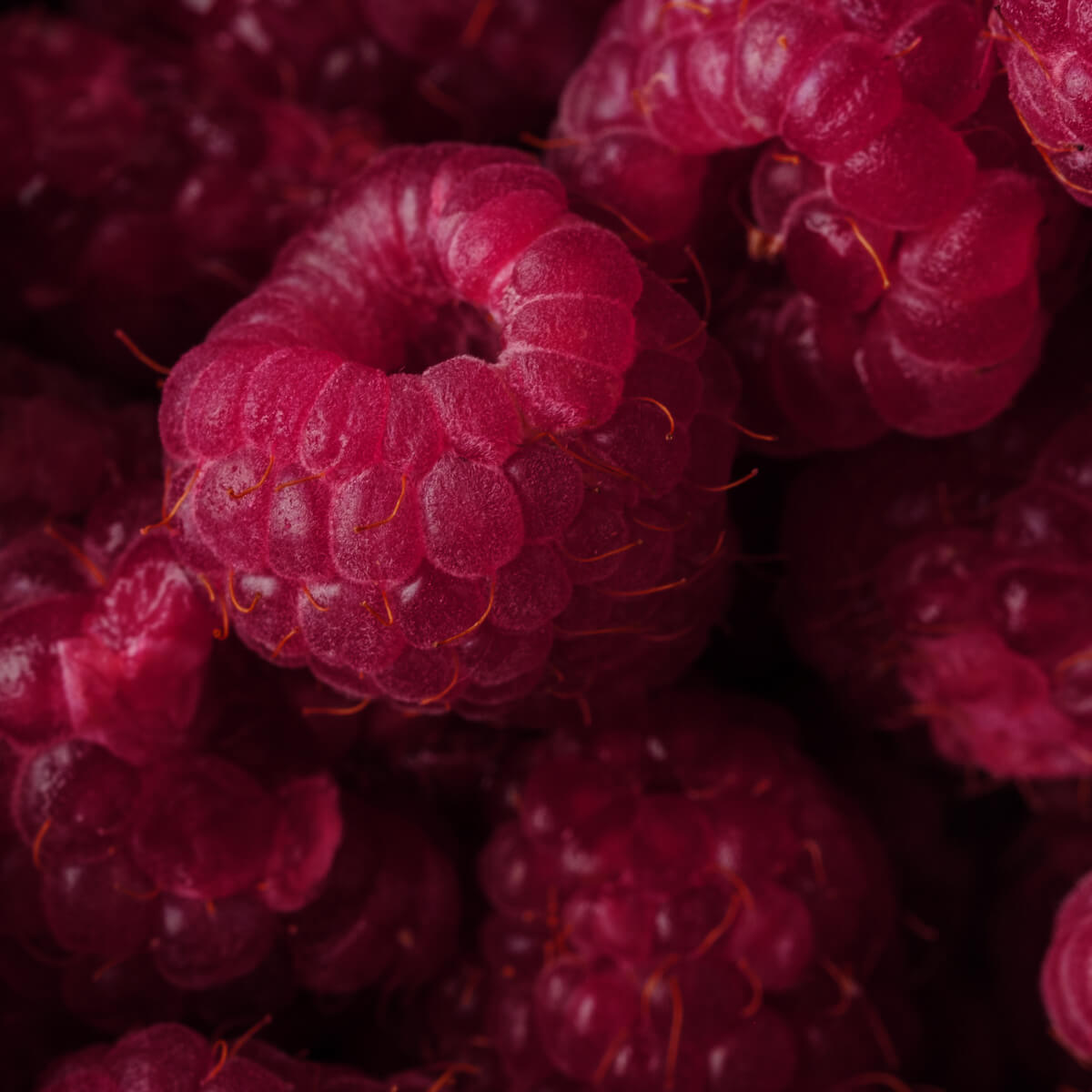 Fresh red fruits guarantee the perfect aroma of EFFEN raspberry flavored vodka.