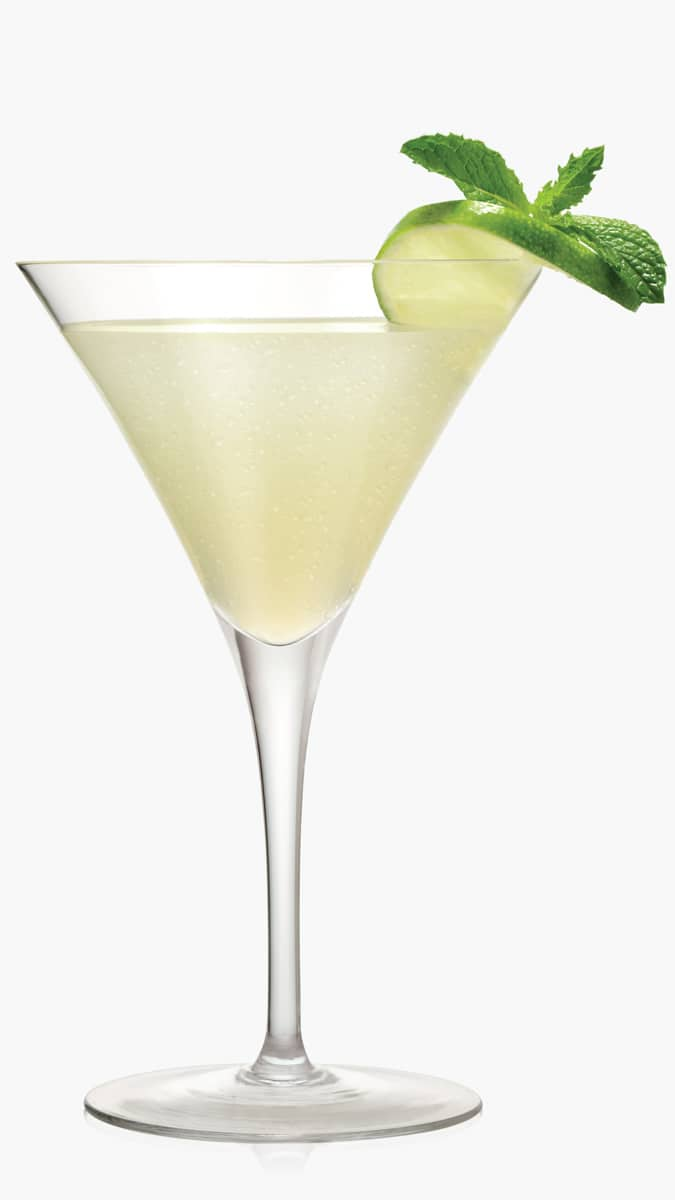 Vodka martini with EFFEN Original and a dash of dry vermouth. Savory, perfect for cocktail hour!