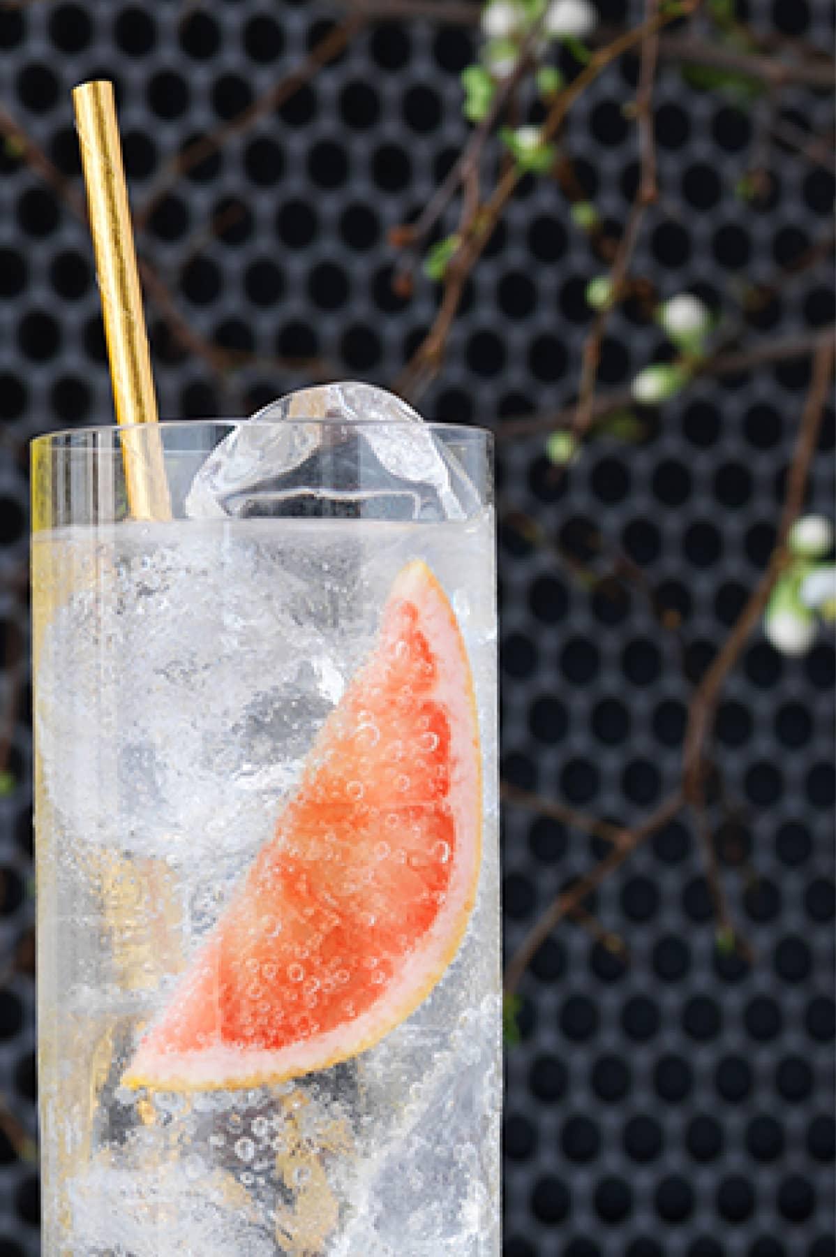 Citrus Vodka Cocktail